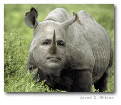 ¿Los conservadores al borde de un ataque de nervios? Por qué la derecha no debería ver una victoria de McCain como el fin del mundo
